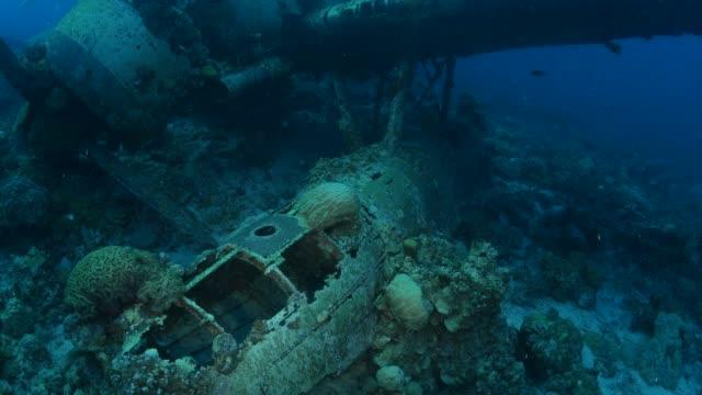 vidéos et rushes de récif artificiel d'hydravion de la marine japonaise aichi e13a - épave