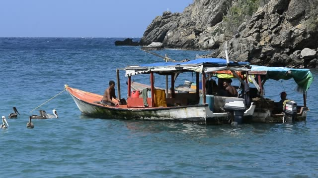 artisanal fishermen. - eco tourism stock videos & royalty-free footage