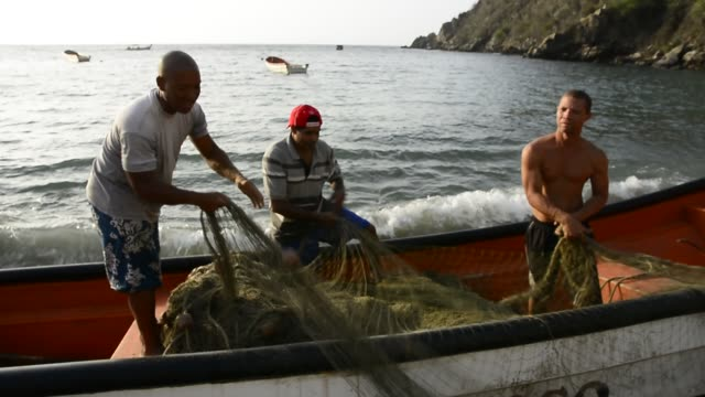artisanal fishermen. - fischer stock-videos und b-roll-filmmaterial