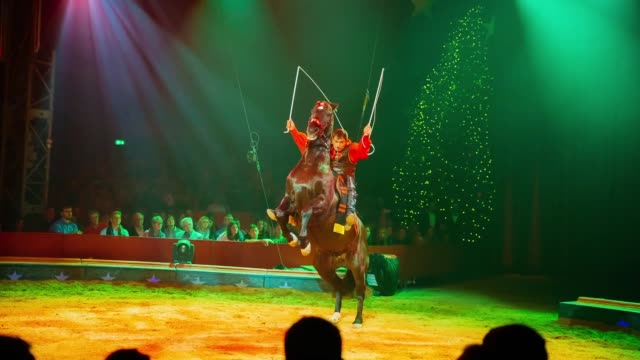 artist yuri volodchenkov performs at the 26. weltweihnachtscircus on december 06, 2018 in stuttgart, germany. - entertainment occupation stock videos & royalty-free footage
