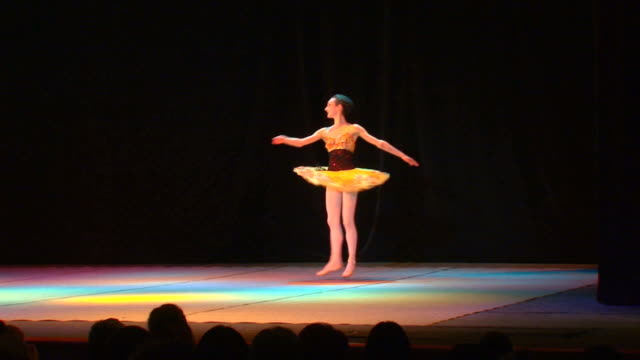 Ballerina di arte