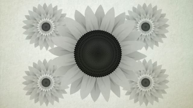 arty sun flower is a beautiful imaginary image of a flower in different visual representations. beautifully depicted in color and black & white manner. - repetition stock videos & royalty-free footage