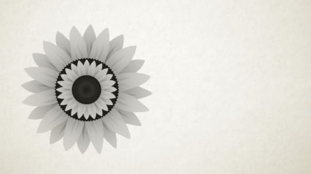 arty sun flower is a beautiful imaginary image of a flower in different visual representations. beautifully depicted in color and black & white manner. - plant bulb stock videos & royalty-free footage