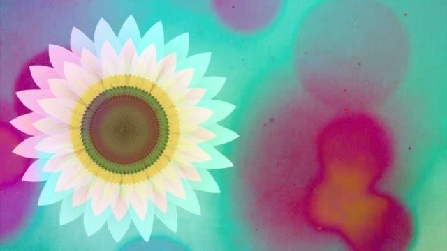 arty sun flower is a beautiful imaginary image of a flower in different visual representations. beautifully depicted in color and black & white manner. - funky stock videos & royalty-free footage