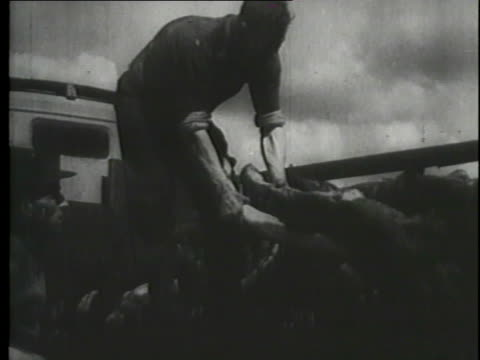 as a montage reveals the atrocities of the holocaust, testimony from the nuremberg trials is heard. - genocide stock videos & royalty-free footage