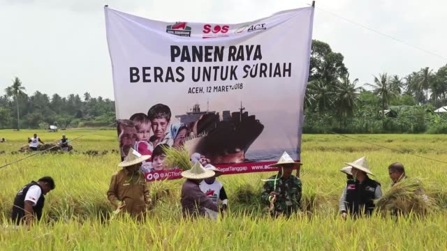 As many as 5000 farmers in Aceh province Indonesia donate 1000 tons of rice that have been harvested from 340 hectares of rice fields The rice will...