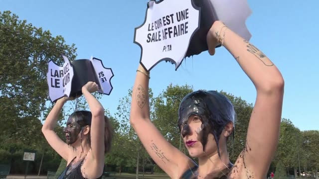 as paris fashion week kicks off activists from animal rights charity peta protest against the use of leather in the luxury goods industry - fashion industry stock videos & royalty-free footage