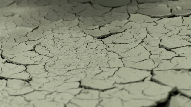 vídeos de stock, filmes e b-roll de as the water evaporates from the soil fine cracks begin to appear and grow in the earth - terreno extremo