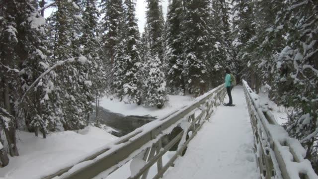 stockvideo's en b-roll-footage met pov als vrouw sneeuwschoenen in bergbos - alleen oudere vrouwen