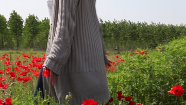 pan as woman walks into field of poppies, strokes blossoms - オニゲシ点の映像素材/bロール