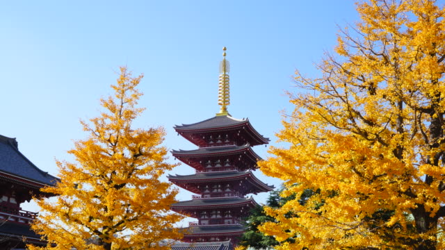 asakusa kannon temple is an ancient buddhist temple located in asakusa tokyo japan it is tokyo's oldest temple and one of its most significant the... - shitamachi stock videos and b-roll footage