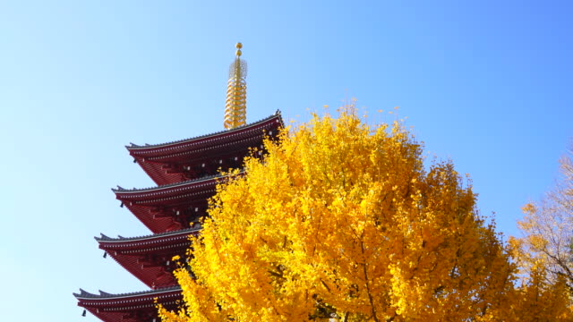 asakusa kannon temple is an ancient buddhist temple located in asakusa tokyo japan it is tokyo's oldest temple and one of its most significant the... - 寺院点の映像素材/bロール