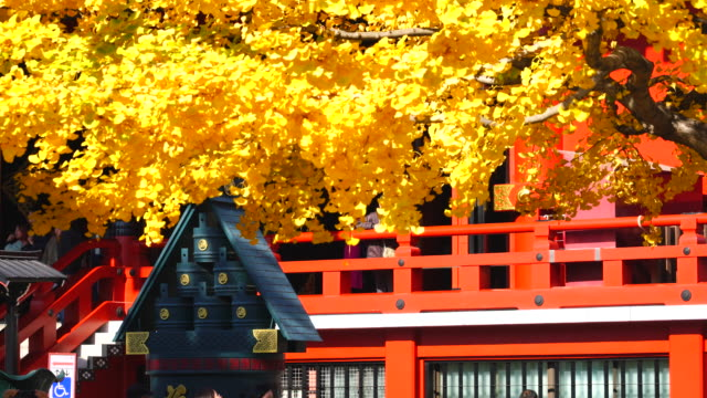 asakusa kannon temple is an ancient buddhist temple located in asakusa tokyo japan it is tokyo's oldest temple and one of its most significant... - ginkgobaum stock-videos und b-roll-filmmaterial