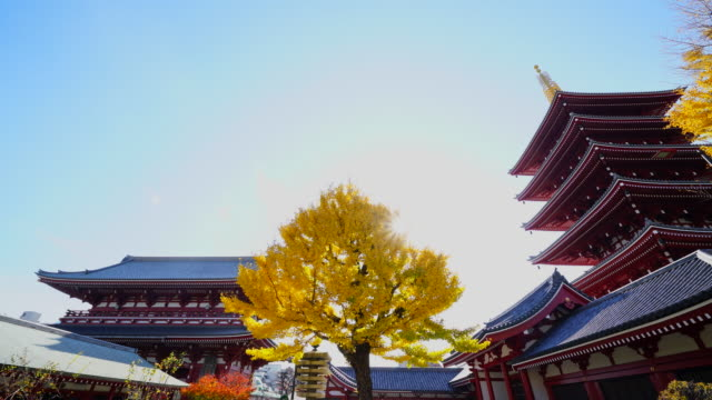 vídeos de stock, filmes e b-roll de asakusa kannon temple is an ancient buddhist temple located in asakusa tokyo japan it is tokyo's oldest temple and one of its most significant the... - templo asakusa kannon