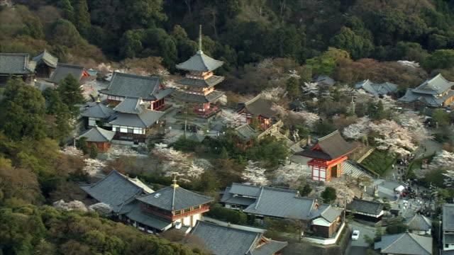 vídeos de stock, filmes e b-roll de aerial asakusa with blossoming cherry trees / tokyo, tokyo prefecture, japan - templo asakusa kannon