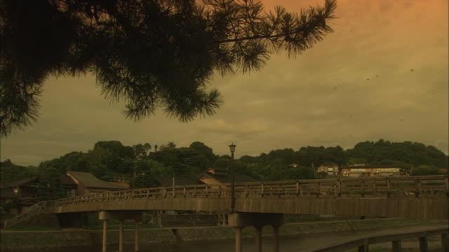 asano river in kanazawa at golden hour - medium group of animals stock videos & royalty-free footage