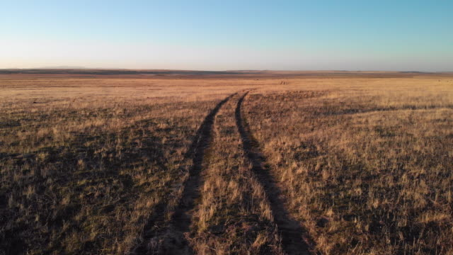 ascending aerial drone shot of a pair of tire tracks running through a desert plain in utah under a clear, blue sky at sunset/sunrise - tire track stock videos & royalty-free footage
