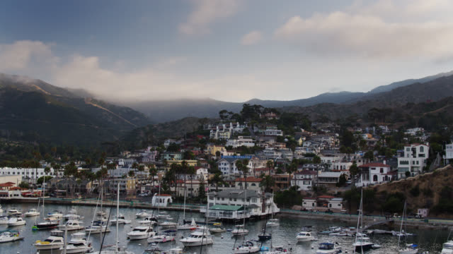 ascending aerial of marina and waterfront of avalon, catalina island - coastal feature stock videos & royalty-free footage