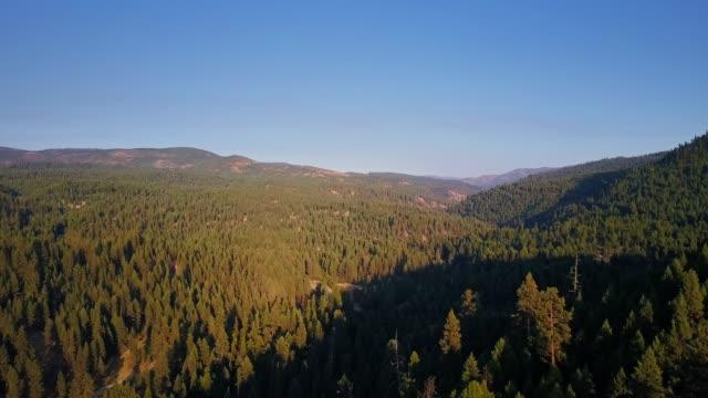 ascending drone shot of bridge creek wildlife area , oregon - umatilla stock videos and b-roll footage