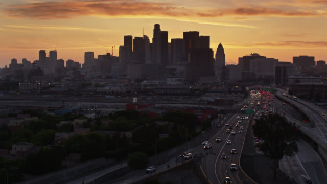 ascending drone shot past trees to reveal downtown los angeles and freeways - motorway stock videos & royalty-free footage