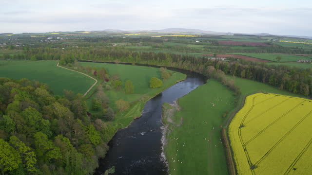 ascending shot of the river tweed - crucifers stock videos & royalty-free footage