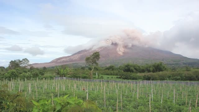 ash clouds rise from the crater of mount sinabung volcano following an eruption in karo district of north sumatra indonesia on june 13 2015 the... - evacuazione video stock e b–roll