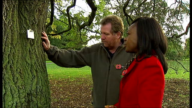 compensation claim against government ENGLAND London Kew Gardens EXT Setup shot of Tony Kirkham showing reporter ash tree Close Shot of bark of tree...
