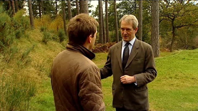 100000 ash trees felled in effort to stop disease england staffordshire ext close shots of dried up brown leaves on ash tree gv dead ash tree close... - owen paterson stock videos and b-roll footage