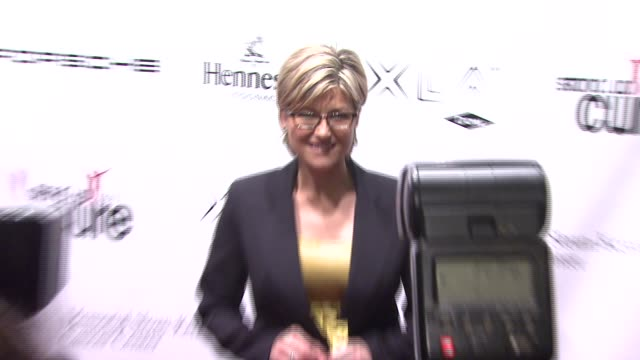 ashleigh banfield at the stand up for a cure - a concert to benefit memorial sloan-kettering cancer center at the hammerstein ballroom in new york,... - benefit concert stock videos & royalty-free footage