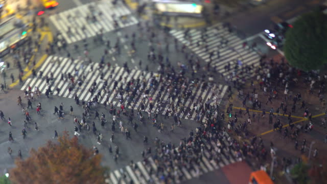 vídeos de stock, filmes e b-roll de asia, japan, tokyo, shibuya, shibuya crossing - crowds of people crossing the famous crosswalks at the centre of shibuyas fashionable shopping and entertainment district - elevated view - tilt shift