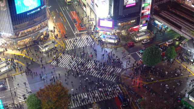 asia, japan, tokyo, shibuya, shibuya crossing - crowds of people crossing the famous crosswalks at the centre of shibuyas fashionable shopping and entertainment district - elevated view - 横断する点の映像素材/bロール