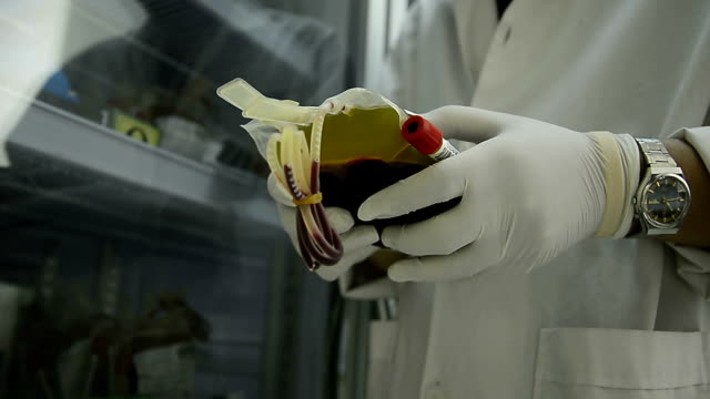 asia medical technician man doing quality control of blood bag during storage refrigerator in laboratory hospital - blood donation stock videos and b-roll footage