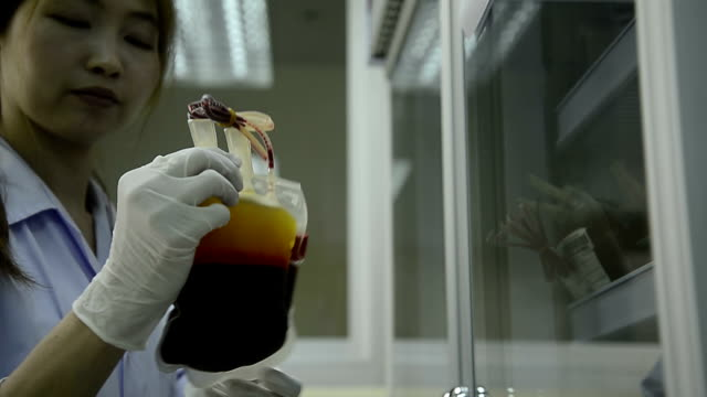 asia medical technician woman doing quality control of blood bag during storage refrigerator in laboratory hospital - blood bag stock videos and b-roll footage