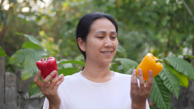 asia women holding bell pepper - lettuce stock videos & royalty-free footage