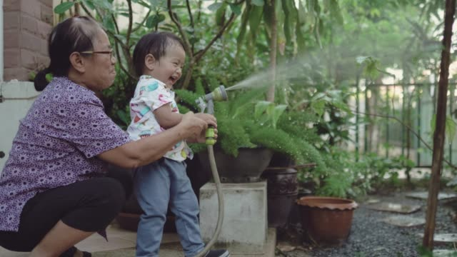 asian baby boy and grandmother watering in garden together - spraying stock videos & royalty-free footage