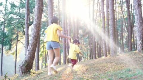 asian baby boy and mother walking in forest - 2 3 years stock videos & royalty-free footage