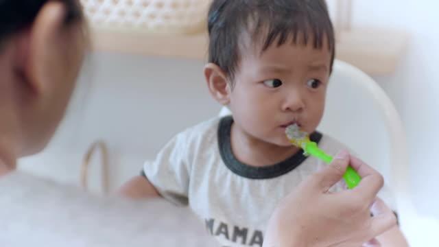 vídeos de stock e filmes b-roll de asian baby boy (6-11months) eating baby food at home - 6 11 meses