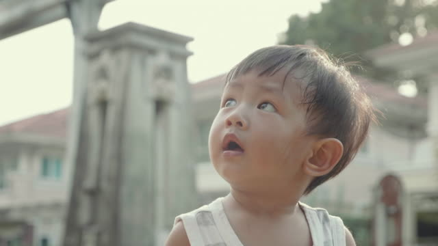 asian baby boy looking at sky and standing at the park. - baby boys stock videos and b-roll footage