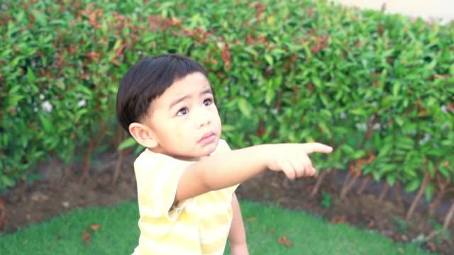 vídeos de stock e filmes b-roll de asian baby boy looking at the sky - vida de bebé