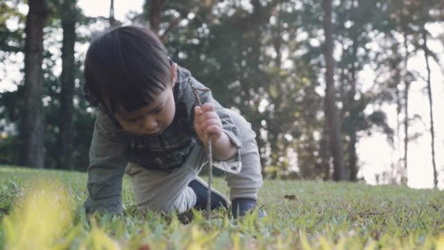 vidéos et rushes de asian petit garçon (12 mois) en jouant sur l'herbe dans la forêt. - 12 17 mois