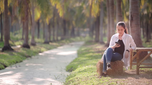 asian beautiful teenage girl using smartphone in the park - 14 15 years stock videos & royalty-free footage