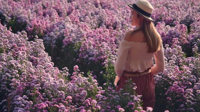 vídeos y material grabado en eventos de stock de slo mo asiática hermosa mujer con sombreros y ella caminando en el campo de la púrpura margaret garden. por la mañana - tierra cultivada