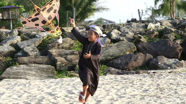 asian boy playing with his traditional kite.he running on the beach. - kid with kite stock videos & royalty-free footage