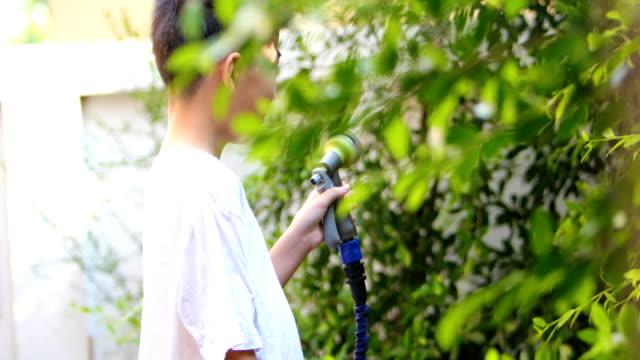 アジアの少年の水まきツリー - 援助点の映像素材/bロール