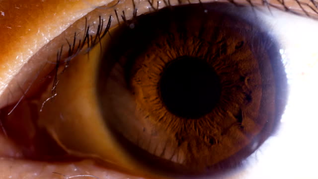 asian brown eye macro - human face photos stock videos & royalty-free footage