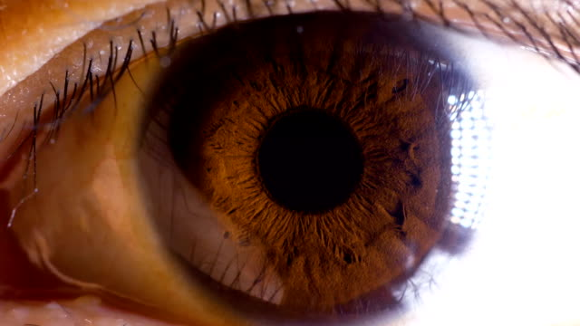 asian brown eye macro - eyeball stock videos and b-roll footage