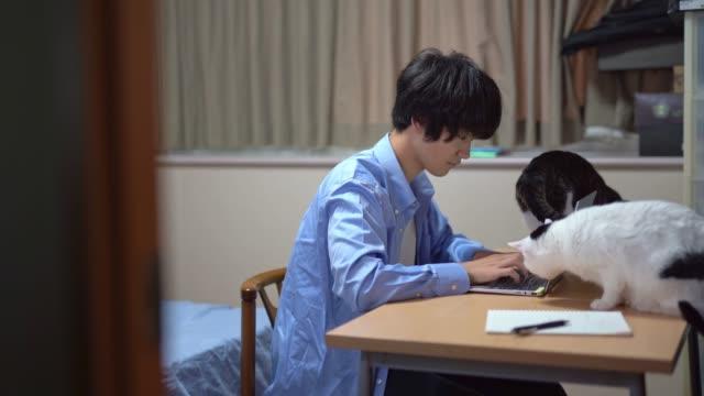 自宅で働くアジアのビジネスマン - 大学生点の映像素材/bロール