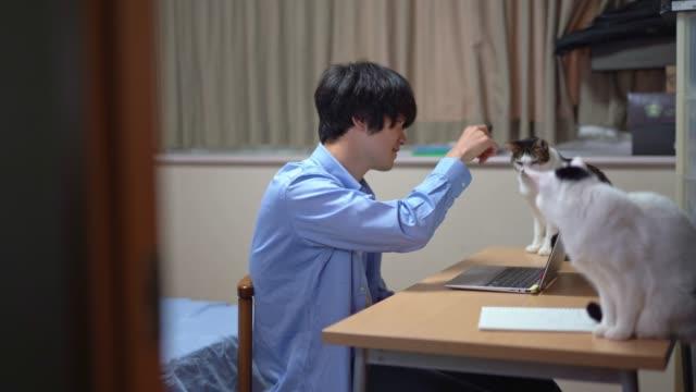 vídeos y material grabado en eventos de stock de empresario asiático trabajando en casa - herramientas profesionales