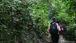 3 asian chinese friends walking in the jungle exploring