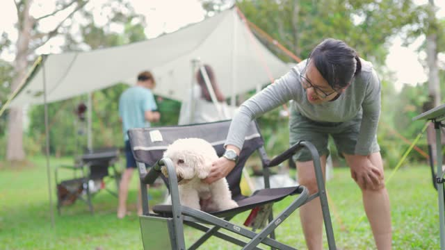 asian chinese mature woman bending over playing with her pet dog toy poodle at camping tent in the morning - bending over stock videos & royalty-free footage